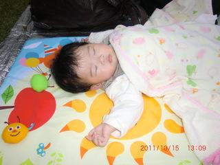 2011_1015_130907-CIMG1333.JPG